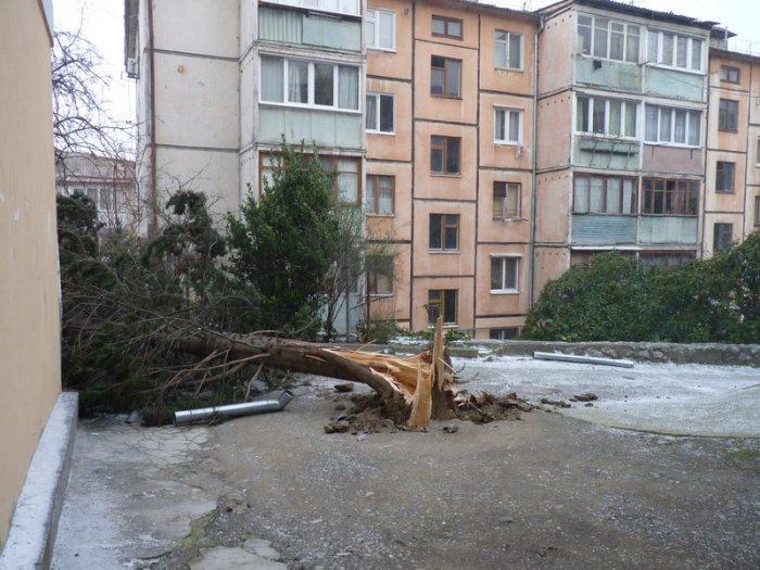 В Ялте приступили к ликвидации последствий урагана