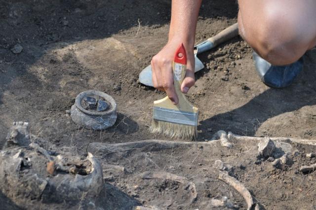 Археологи из Нижнего Новгорода займутся раскопками под Керчью