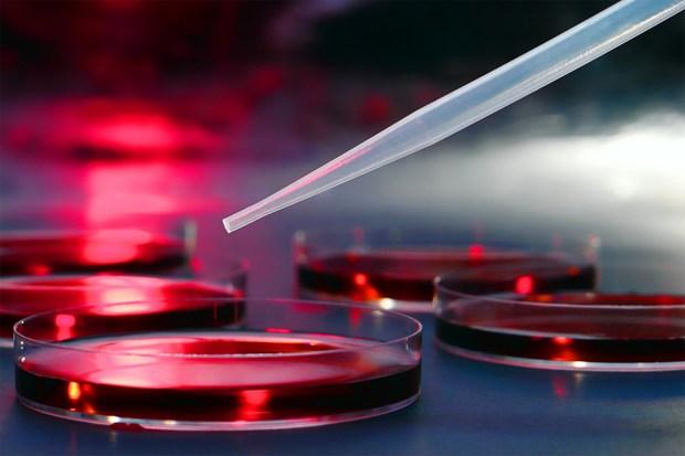 В Крыму может появиться онкологическая лаборатория