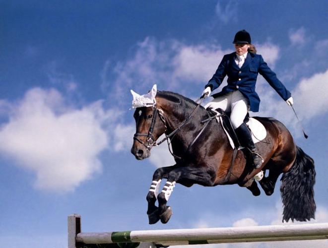 В Крыму состоится чемпионат республики по конному спорту