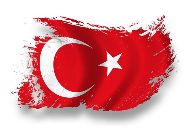 Делегация из Турции проверит положение крымских татар на полуострове
