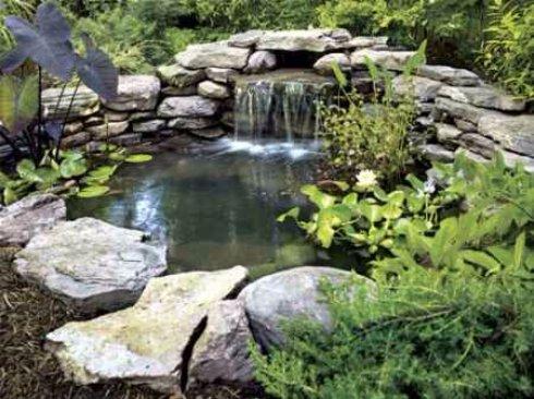 Садовый пруд залог покоя