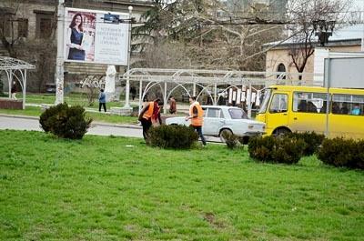 Фирмы-застройщики готовы озеленять Симферополь