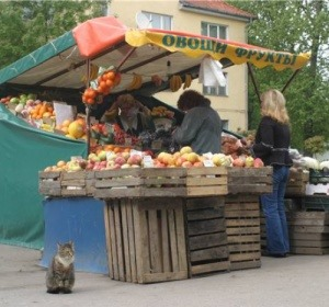 Прокуратура пока не приняла окончательного решения по поводу сноса рынка на улице Козлова