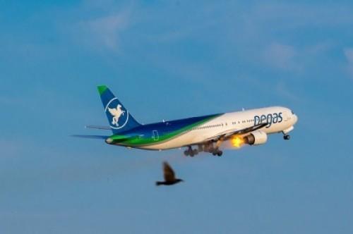 В симферопольском аэропорту самолет совершил аварийную посадку