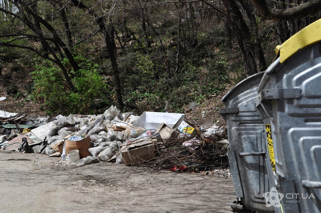 Российские студенты будут помогать убирать Ялту от мусора