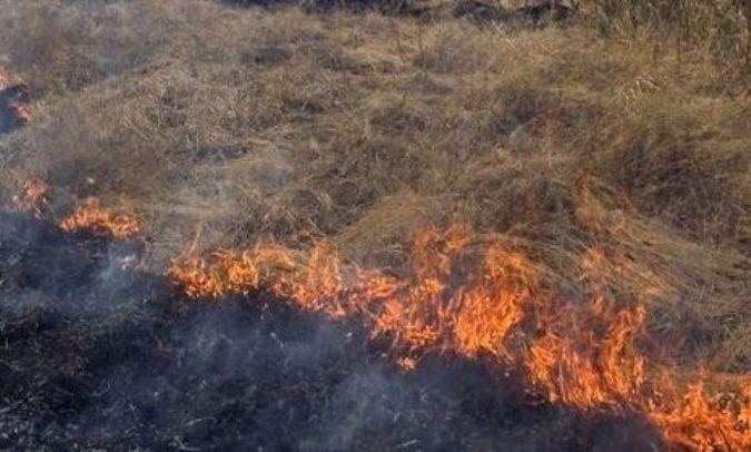 В Севастополе введен режим повышенной пожарной опасности