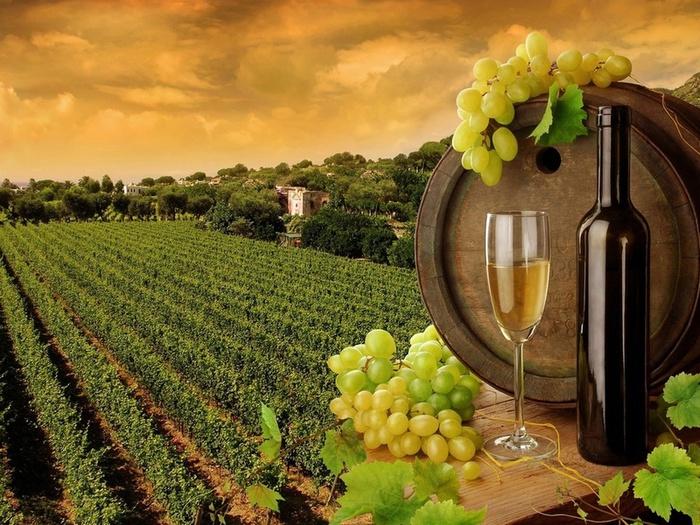 В Крым будут отмечать день виноделия