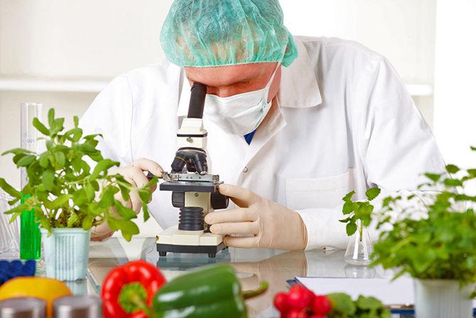 В Крыму специальная лаборатория будет проверять ввозимые продукты