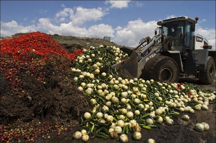В Крыму уничтожили 4 тонны санкционных продуктов