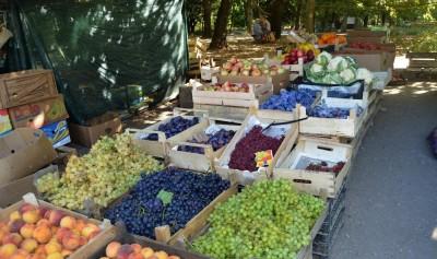 Симферопольские власти заменят стихийную торговлю муниципальными рынками
