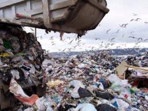 Твердые бытовые отходы (ТБО)  - вывоз