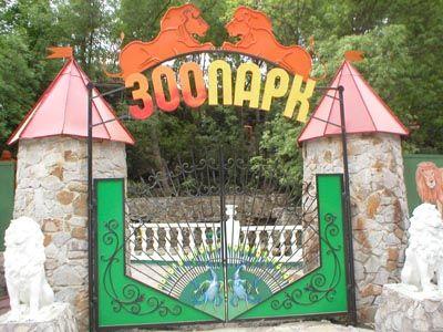 Вместо достойного отдыха в лагере, детям предложили посетить «Сказку» и угостили мороженым