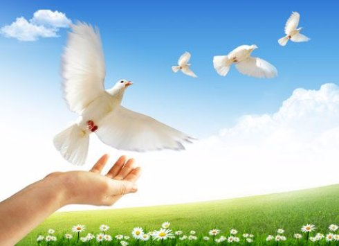 Безопасная толерантность как путь к мирному будущему