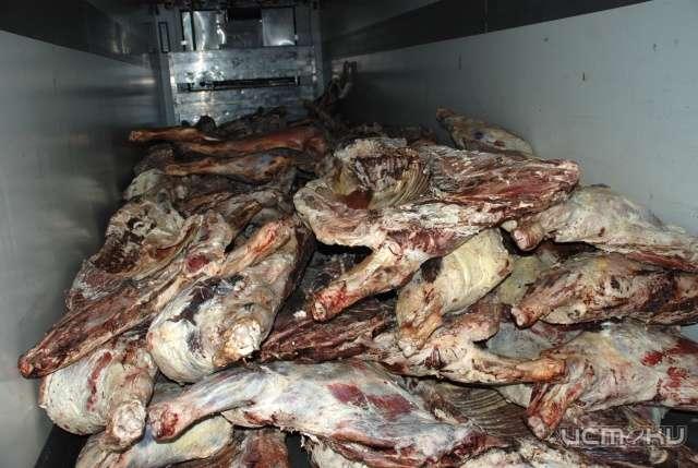 Украинскую говядину пытались ввезти в Крым в автомобиле для навоза