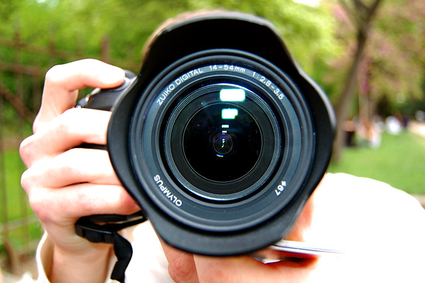 В Ялте по закону предстоит ответить очередному фотографу-живодеру