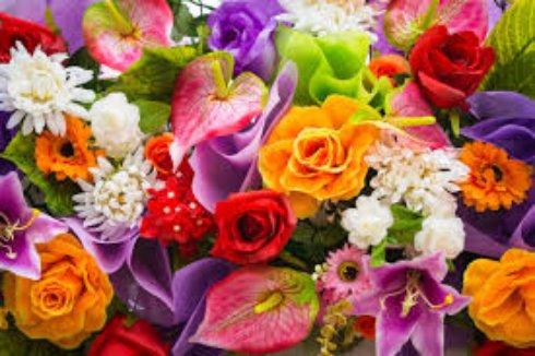 Цветы — дары природы, так давайте дарить их любимым!