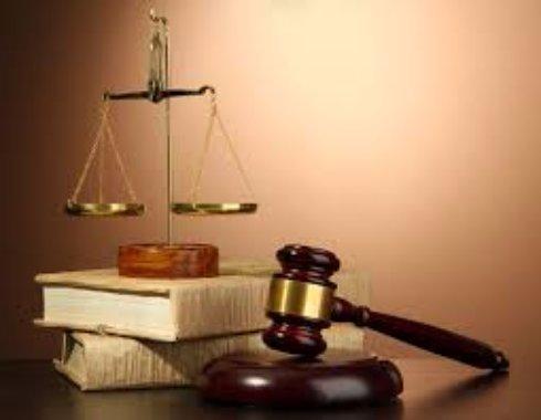 Юридическая деятельность и ее виды