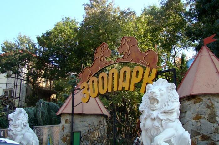 Зубков принял решение о закрытии парка «Тайган» и зоопарка «Сказка»