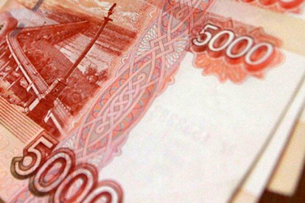 Севастополец заплатит крупный штраф за вырубку сосны на своем участке