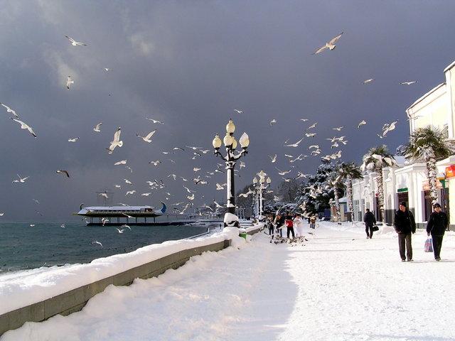 Крым вновь набирает популярность у туристов