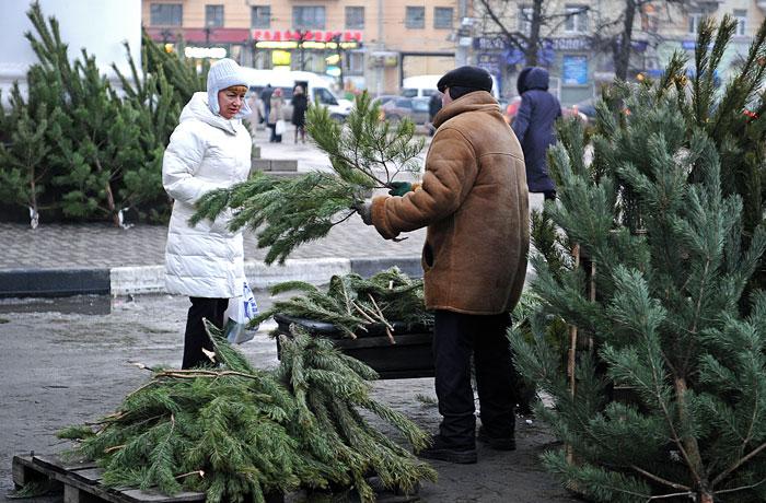 В Симферополе решили сократить количество елочных базаров