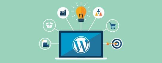 REG.RU отвечает на вопрос, как установить WordPress