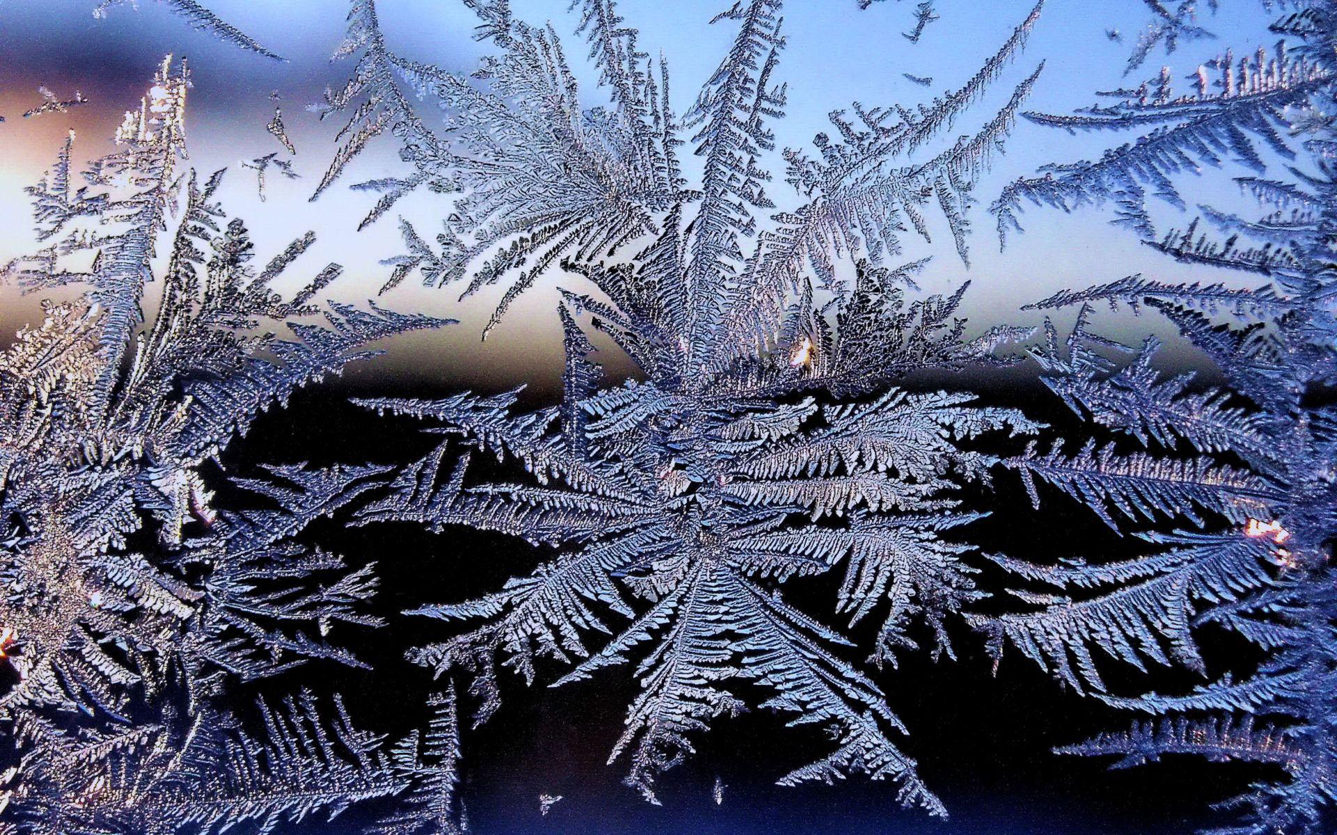 В Севастополе холод убил трех человек