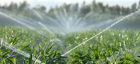 В Крыму поля будут поливать канализационной водой
