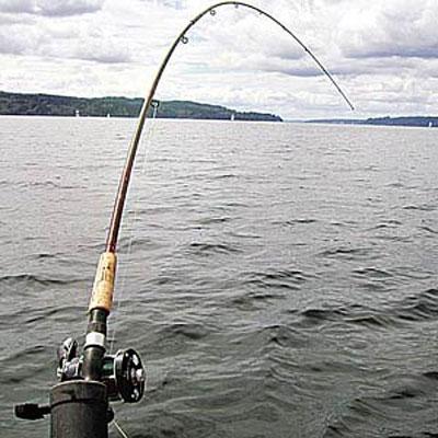 В Симферопольском районе мошенники продавали гражданам «путевки на ловлю рыбы