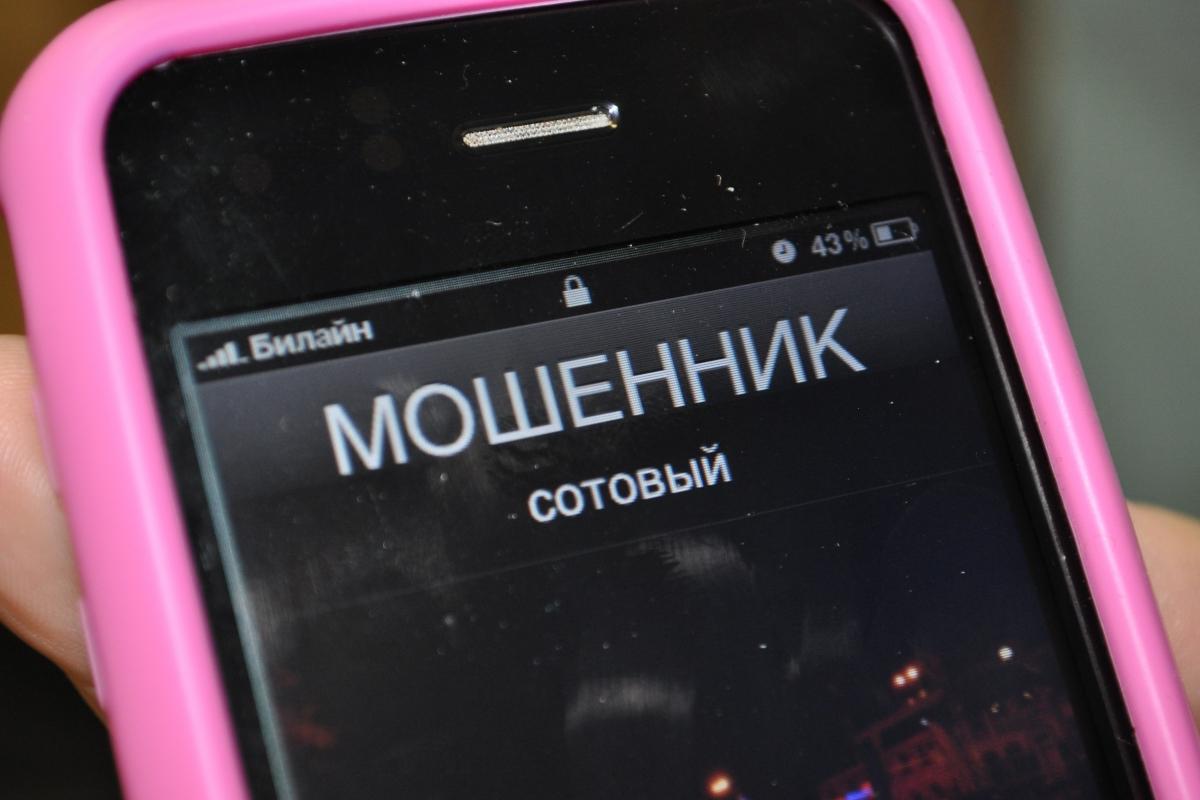 В Севастополе осудили телефонного мошенника