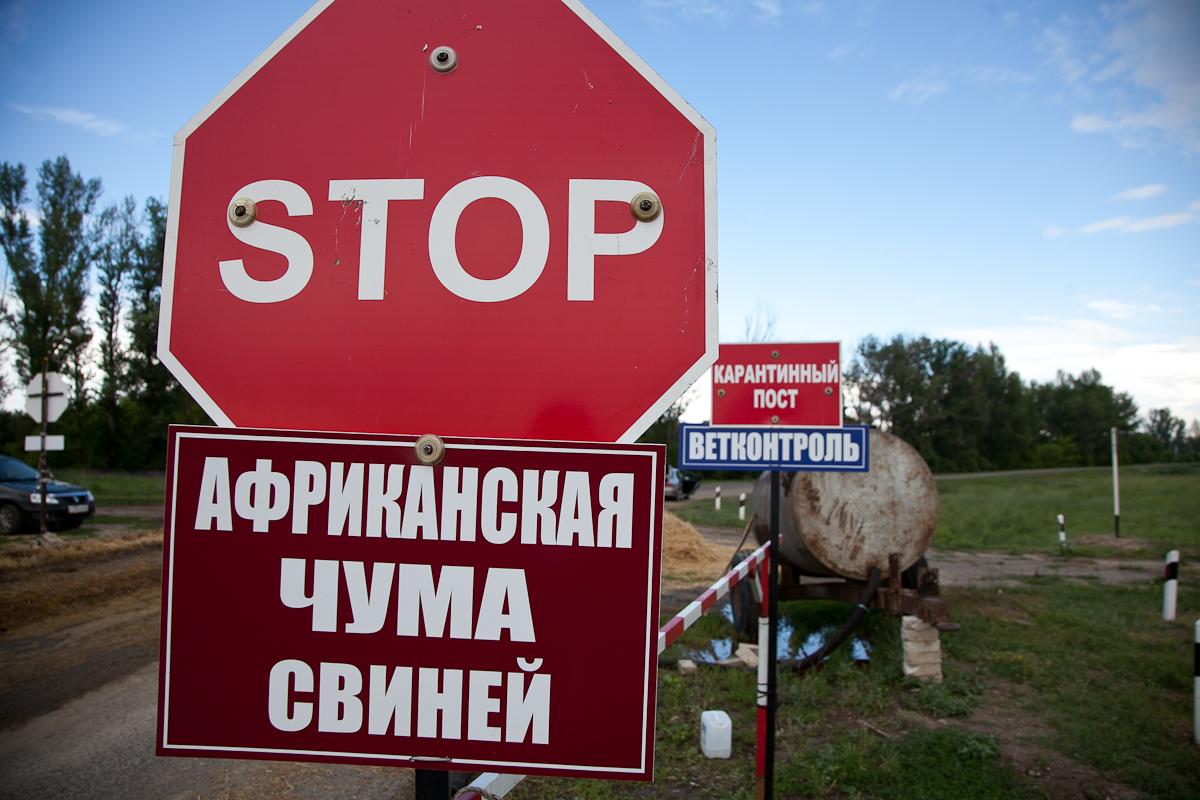 В Крыму под карантин попал отдельно взятый автомобиль