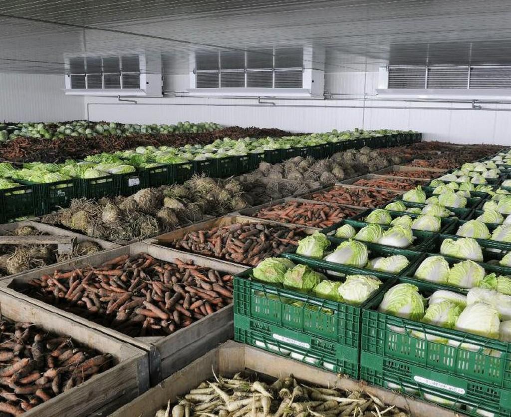 В Крыму есть серьезные проблемы с хранением продукции