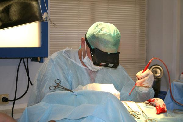 В Ялте хотят открыть центр по обучению хирургов
