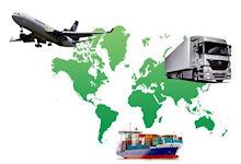 Быстрые, качественные и безопасные международные перевозки с Vital Special Service