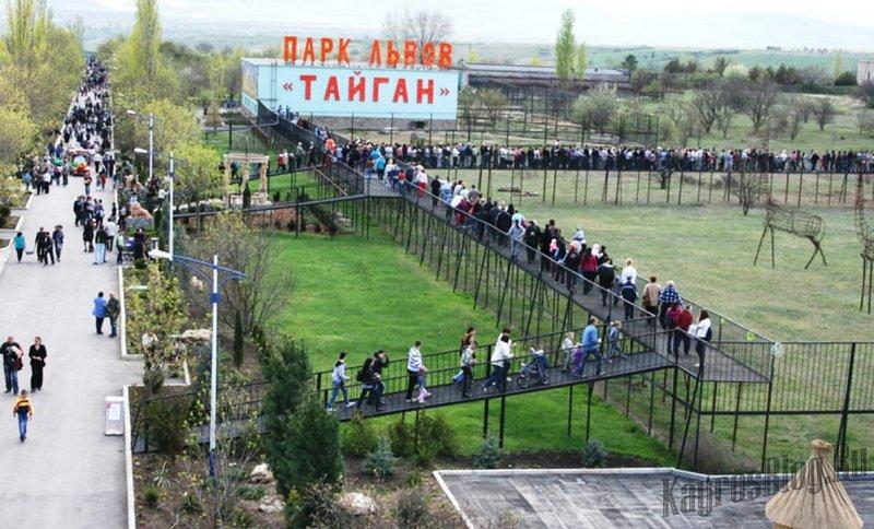 «Тайган» оштрафовали за слишком большую тень