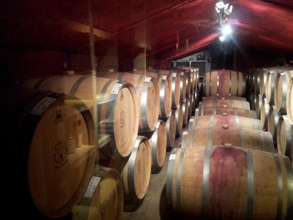 В старом подвале Гурзуфа откроется элитная винодельня