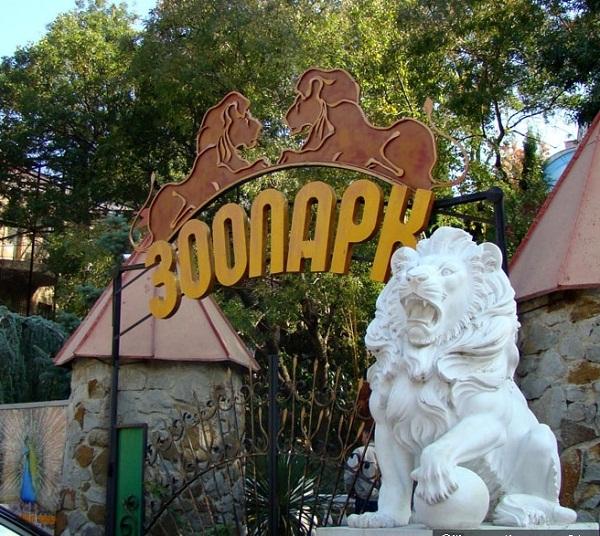 В Крыму набирает обороты скандал по поводу бассейна для морских животных у зоопарка «Сказка»
