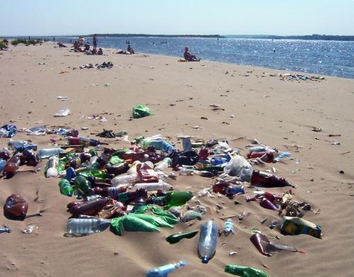 Крымская общественная организация шокирована санитарным состоянием местных пляжей