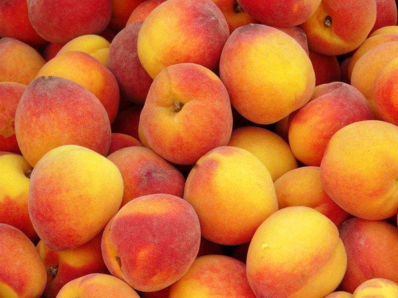 Под Симферополем на свалке захоронили запрещенные персики