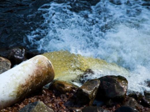 Балаклавские экологи бьют тревогу: все нечистоты в городе сливаются прямо в море