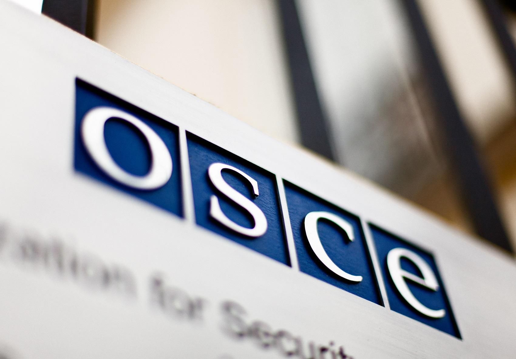 Россия не пустит представителей ОБСЕ в Крым