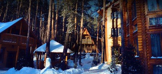 Отдых в Святогорске: деревянные коттеджи в сосновом бору