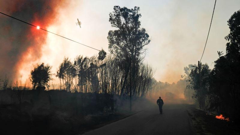 Премьер Португалии ушел в отставку из-за гибели людей на лесных пожарах