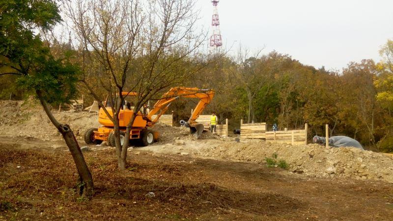В Севастополе уничтожили редкие деревья ради исторического фестиваля