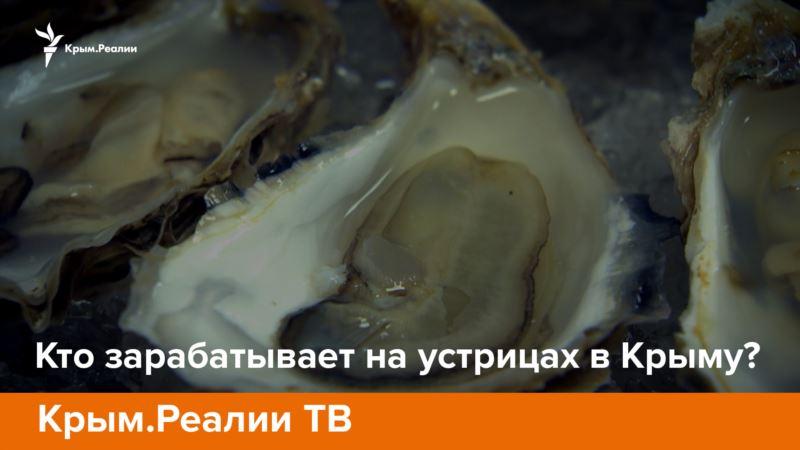 Телепроект «Крым.Реалии»: Кто зарабатывает на устрицах в Крыму?