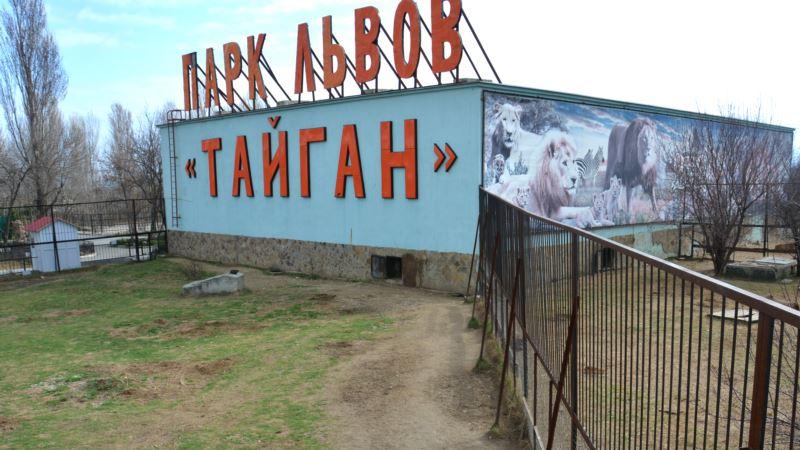 Зубков отменил шоу с выпуском львов в сафари-парке в Крыму
