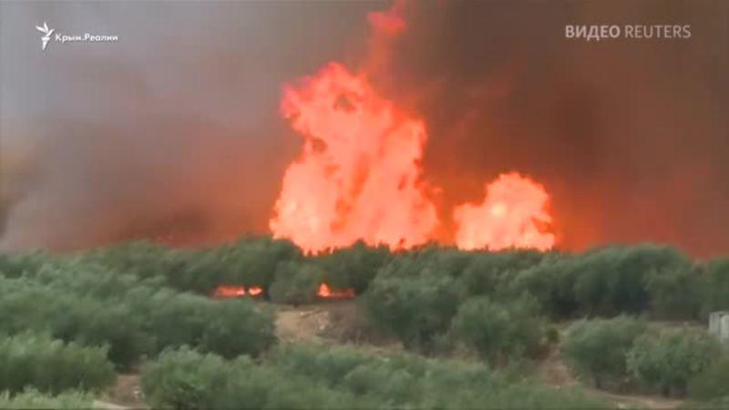 В Испании горят тысячи гектаров леса (видео)