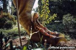 В Никитском ботсаду пройдет фотосессия, посвященная эпохе динозавров (+фото)