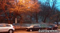 В Симферополе выпал снег (+фото)